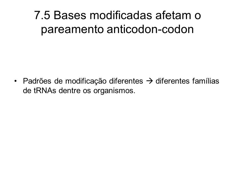 Padrões de modificação diferentes diferentes famílias de tRNAs dentre os organismos. 7.5 Bases modificadas afetam o pareamento anticodon-codon