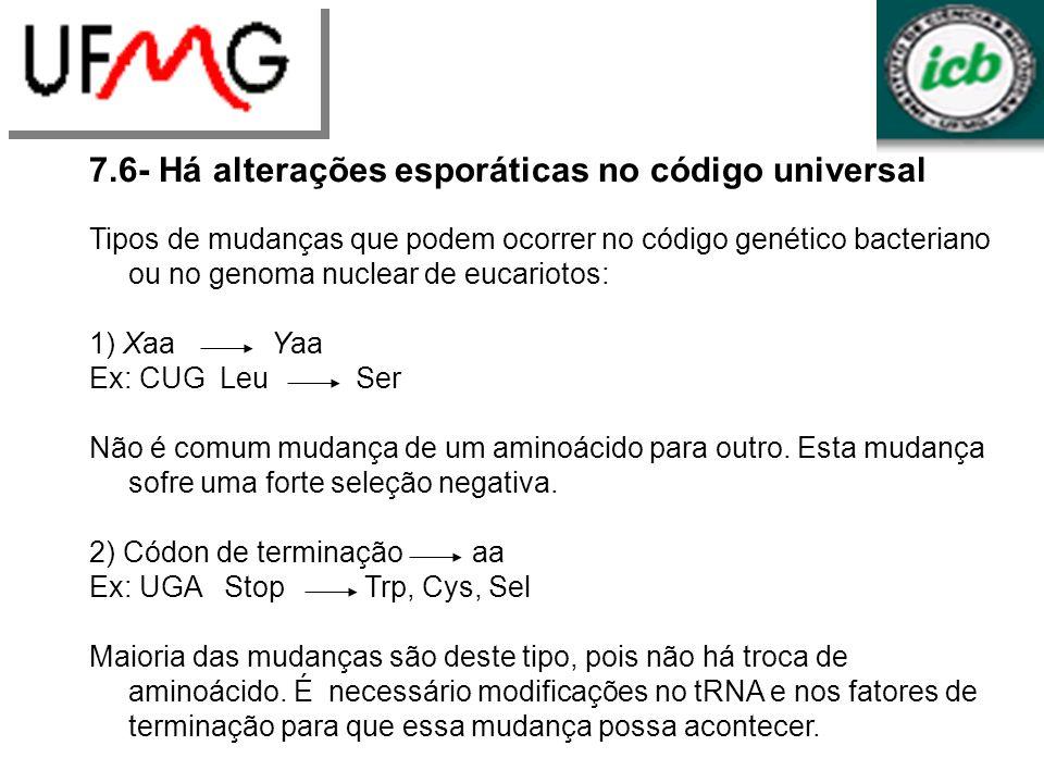 LGCMURLGA 7.6- Há alterações esporáticas no código universal Tipos de mudanças que podem ocorrer no código genético bacteriano ou no genoma nuclear de eucariotos: 1) Xaa Yaa Ex: CUG Leu Ser Não é comum mudança de um aminoácido para outro.