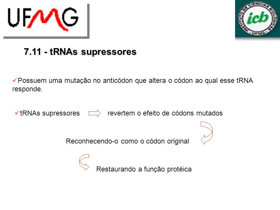 7.11 - tRNAs supressores tRNAs supressores revertem o efeito de códons mutados Possuem uma mutação no anticódon que altera o códon ao qual esse tRNA r