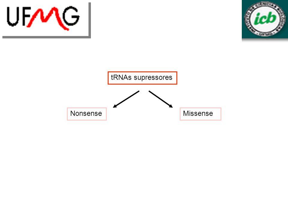 tRNAs supressores NonsenseMissense
