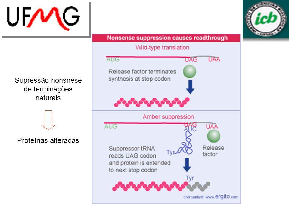 Supressão nonsnese de terminações naturais Proteínas alteradas