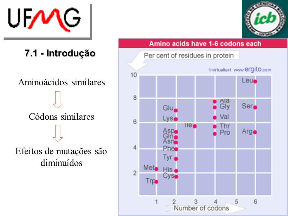 7.1 - Introdução Universalidade do código Estabelecimento no começo da evolução Pequeno número de códons representava pequeno número de aminoácidos Códons mais específicos e maior número de aminoácidos Há exceções para o código universal