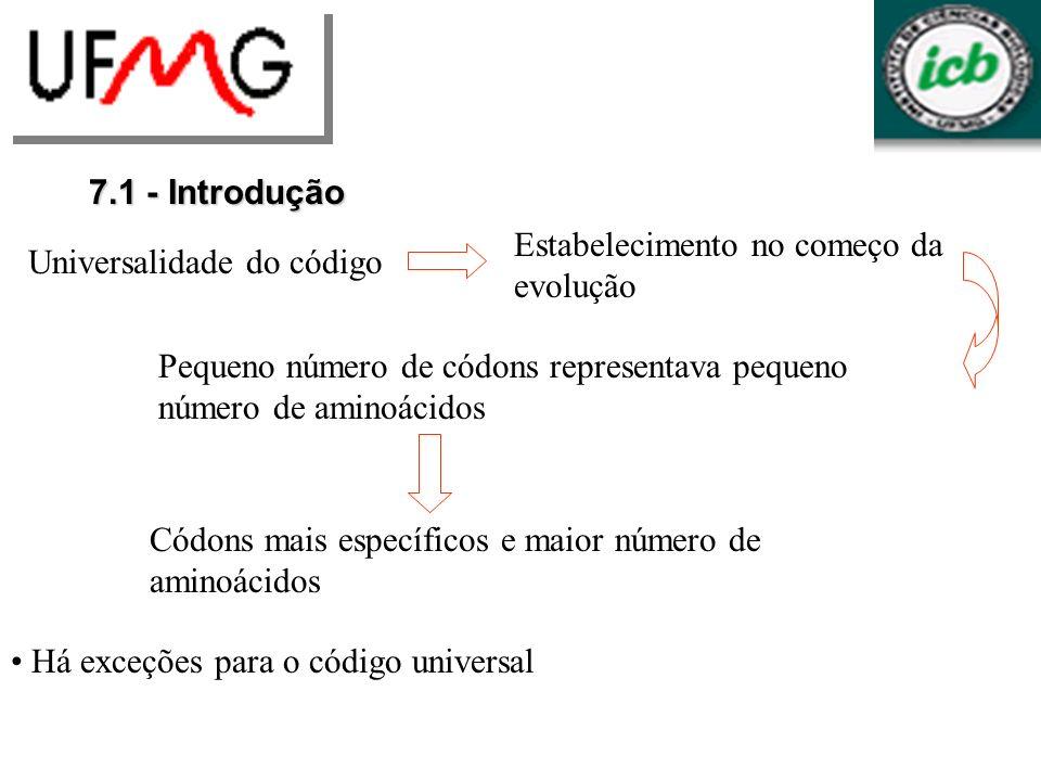 7.1 - Introdução Universalidade do código Estabelecimento no começo da evolução Pequeno número de códons representava pequeno número de aminoácidos Có