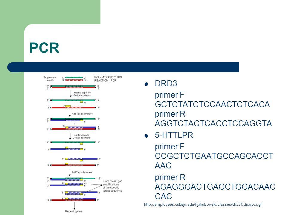 PCR DRD3 primer F GCTCTATCTCCAACTCTCACA primer R AGGTCTACTCACCTCCAGGTA 5-HTTLPR primer F CCGCTCTGAATGCCAGCACCT AAC primer R AGAGGGACTGAGCTGGACAAC CAC