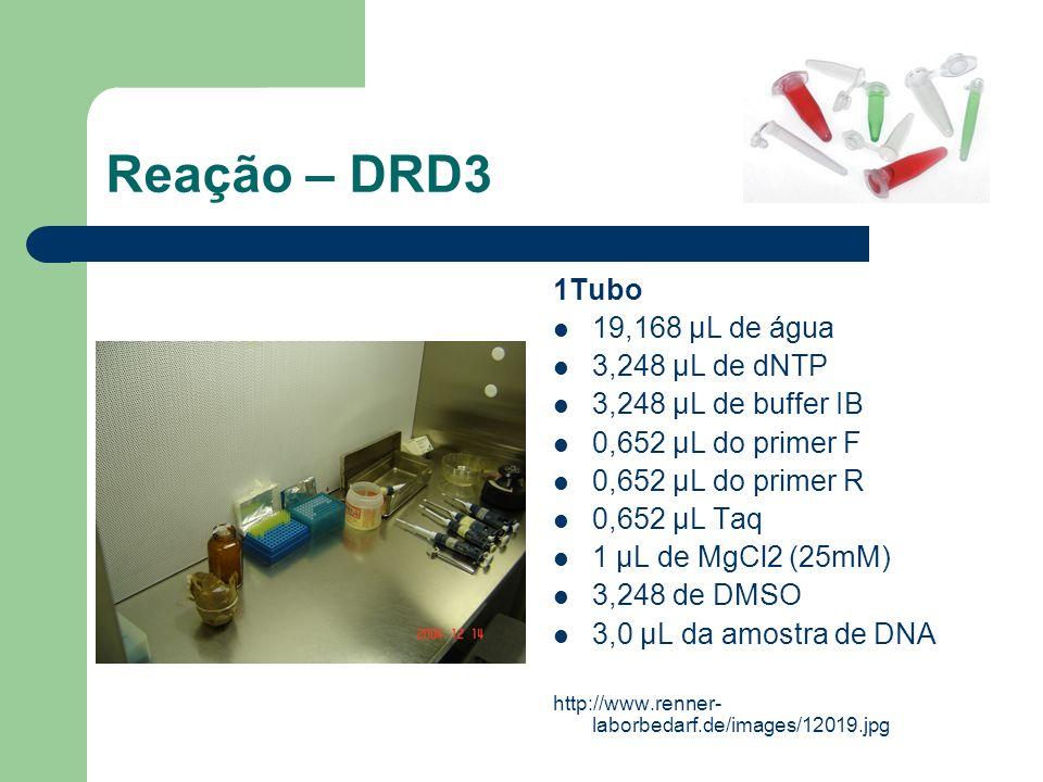Reação – DRD3 1Tubo 19,168 μL de água 3,248 μL de dNTP 3,248 μL de buffer IB 0,652 μL do primer F 0,652 μL do primer R 0,652 μL Taq 1 μL de MgCl2 (25m