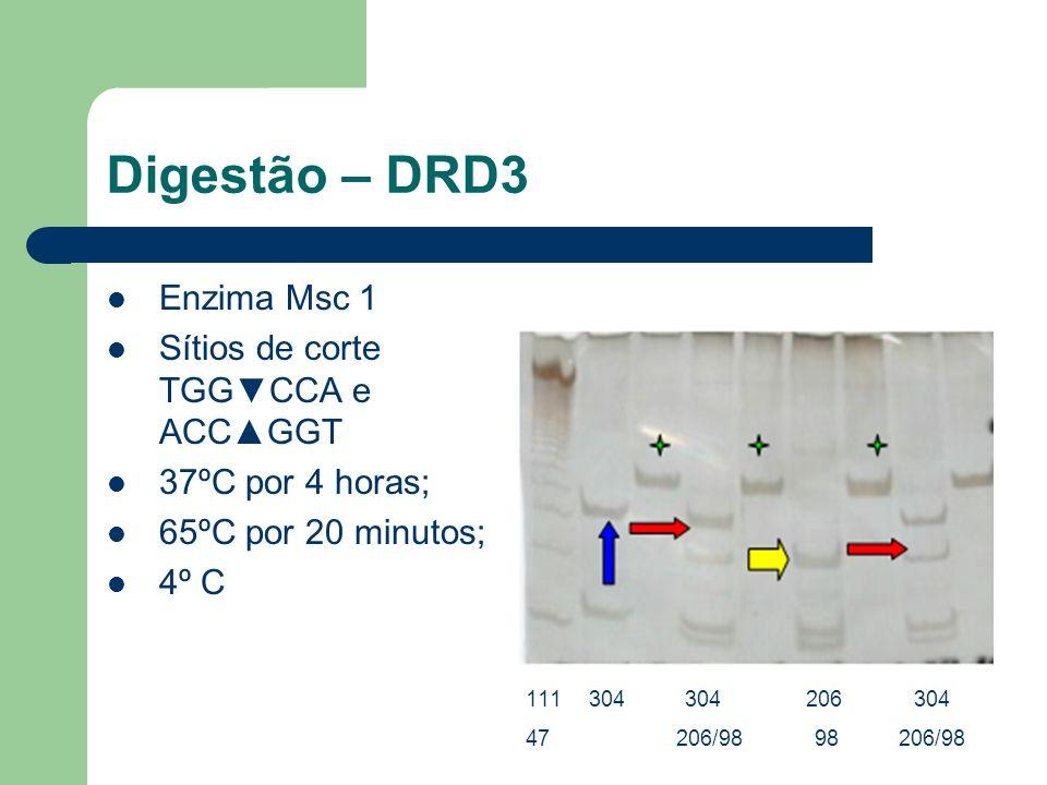 Digestão – DRD3 Enzima Msc 1 Sítios de corte TGGCCA e ACCGGT 37ºC por 4 horas; 65ºC por 20 minutos; 4º C 111 304 304 206 304 47 206/98 98 206/98