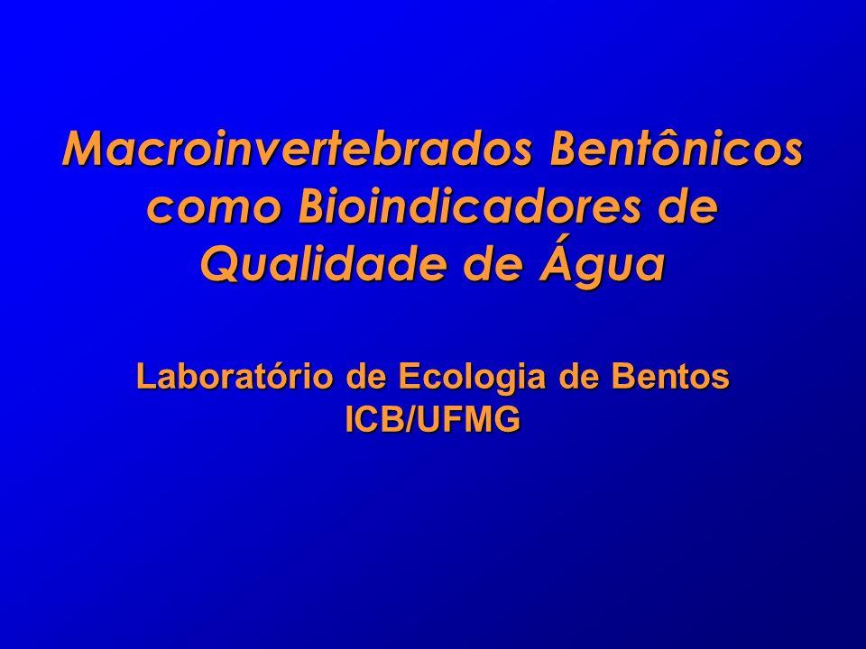 Macroinvertebrados Bentônicos como Bioindicadores de Qualidade de Água Laboratório de Ecologia de Bentos ICB/UFMG