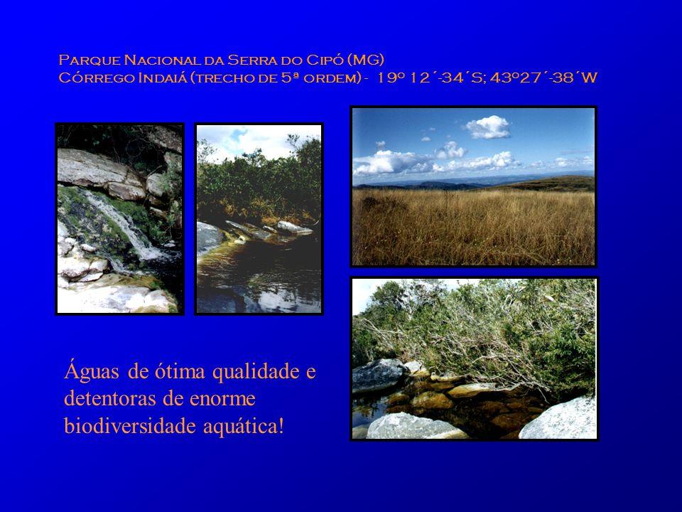Parque Nacional da Serra do Cipó (MG) Córrego Indaiá (trecho de 5ª ordem) - 19 o 12´-34´S; 43 o 27´-38´W Águas de ótima qualidade e detentoras de enor