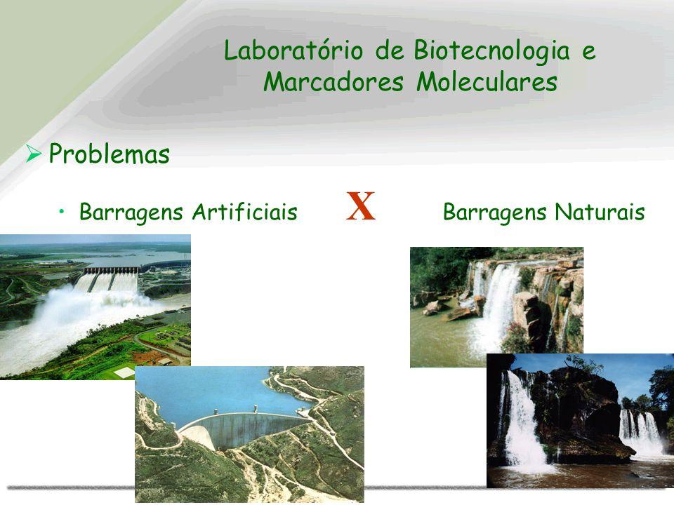 Laboratório de Biotecnologia e Marcadores Moleculares Problemas Barragens Artificiais X Barragens Naturais
