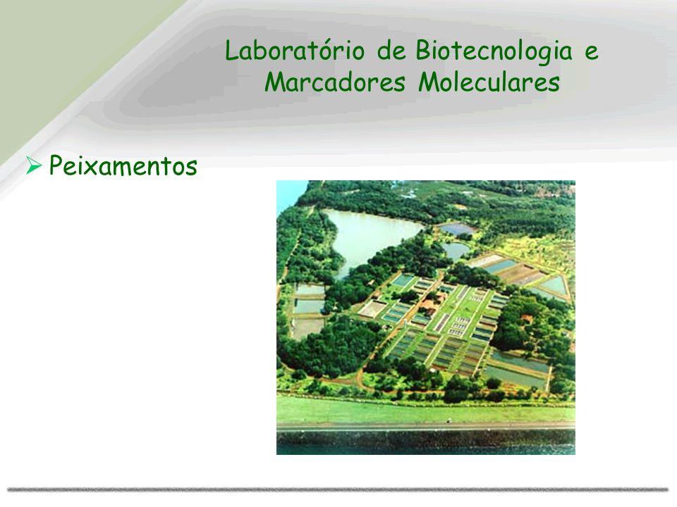 Laboratório de Biotecnologia e Marcadores Moleculares Peixamentos