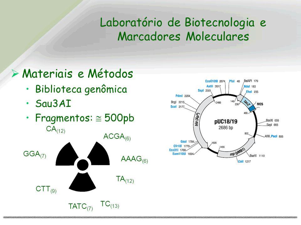 Laboratório de Biotecnologia e Marcadores Moleculares Materiais e Métodos Biblioteca genômica Sau3AI Fragmentos: 500pb CA (12) TC (13) CTT (9) ACGA (6