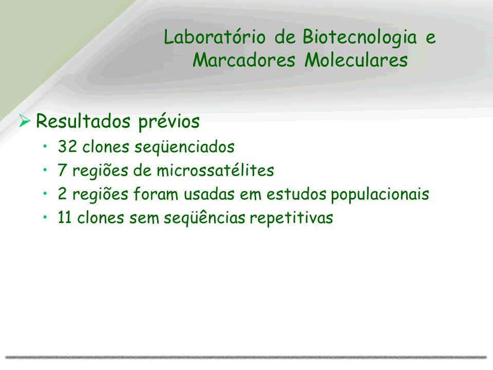 Laboratório de Biotecnologia e Marcadores Moleculares Resultados prévios 32 clones seqüenciados 7 regiões de microssatélites 2 regiões foram usadas em