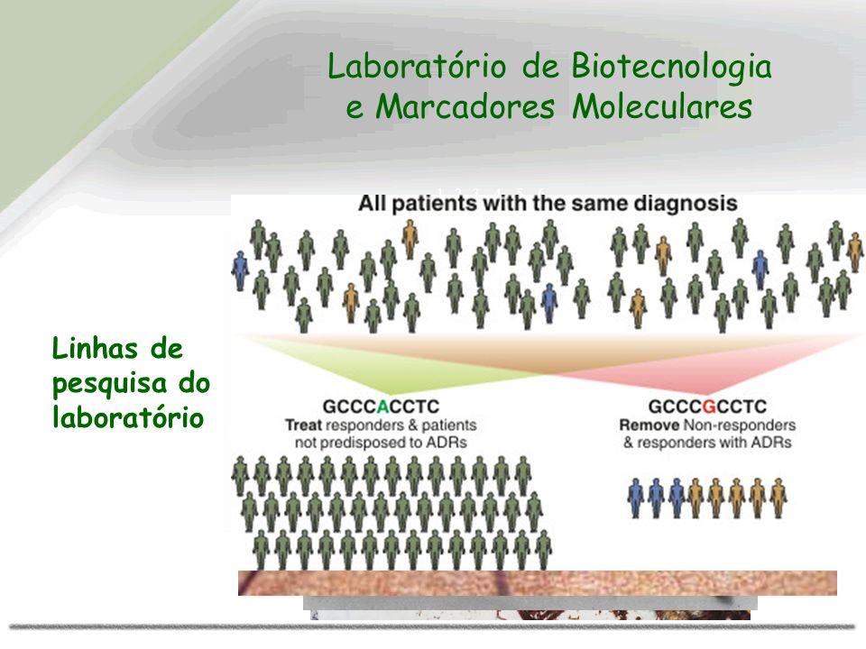 1 2 3 4 5 6 TH01 CSFPO Linhas de pesquisa do laboratório Laboratório de Biotecnologia e Marcadores Moleculares
