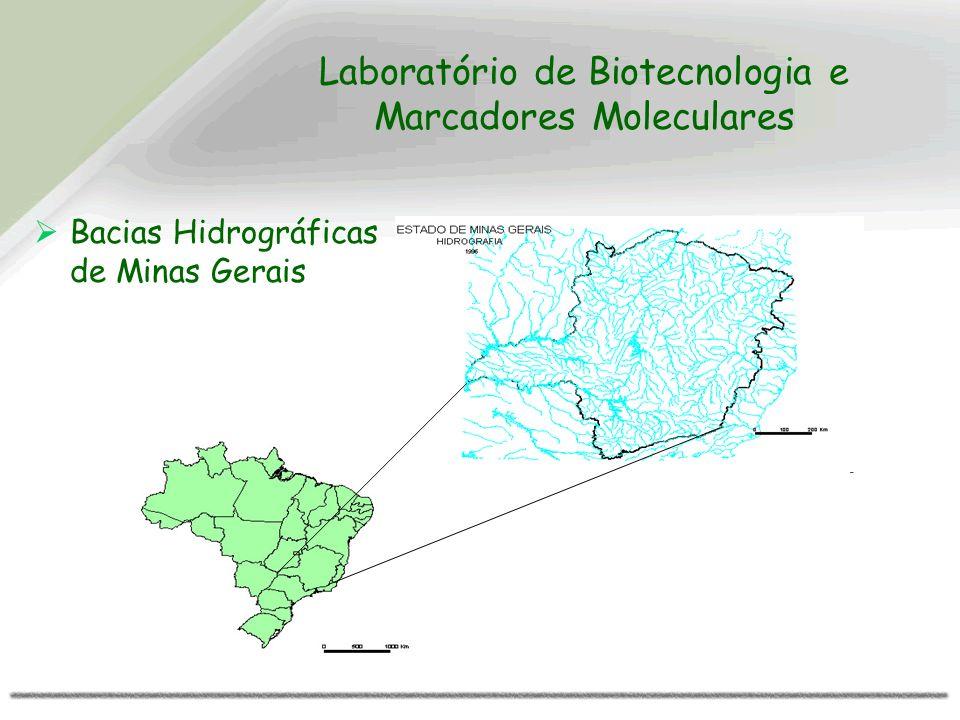 Laboratório de Biotecnologia e Marcadores Moleculares Bacias Hidrográficas de Minas Gerais