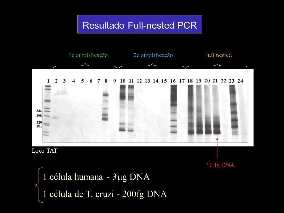 1a amplificação2a amplificaçãoFull nested 10 fg DNA Loco TAT 1 célula humana - 3 g DNA 1 célula de T. cruzi - 200fg DNA Resultado Full-nested PCR