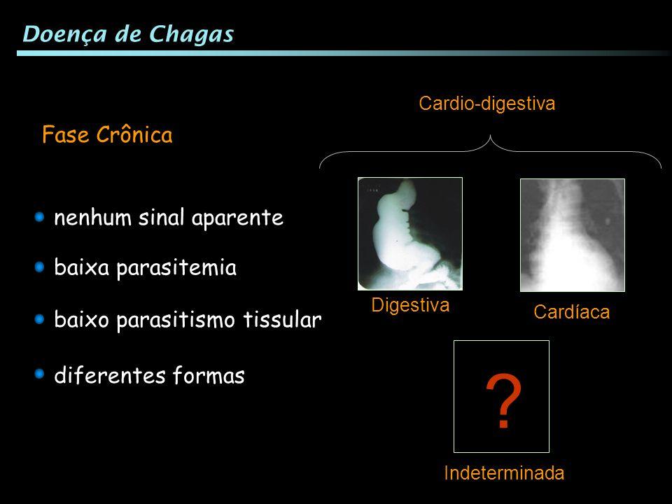 Fase Crônica baixa parasitemia baixo parasitismo tissular nenhum sinal aparente diferentes formas Cardíaca Digestiva Indeterminada ? Cardio-digestiva