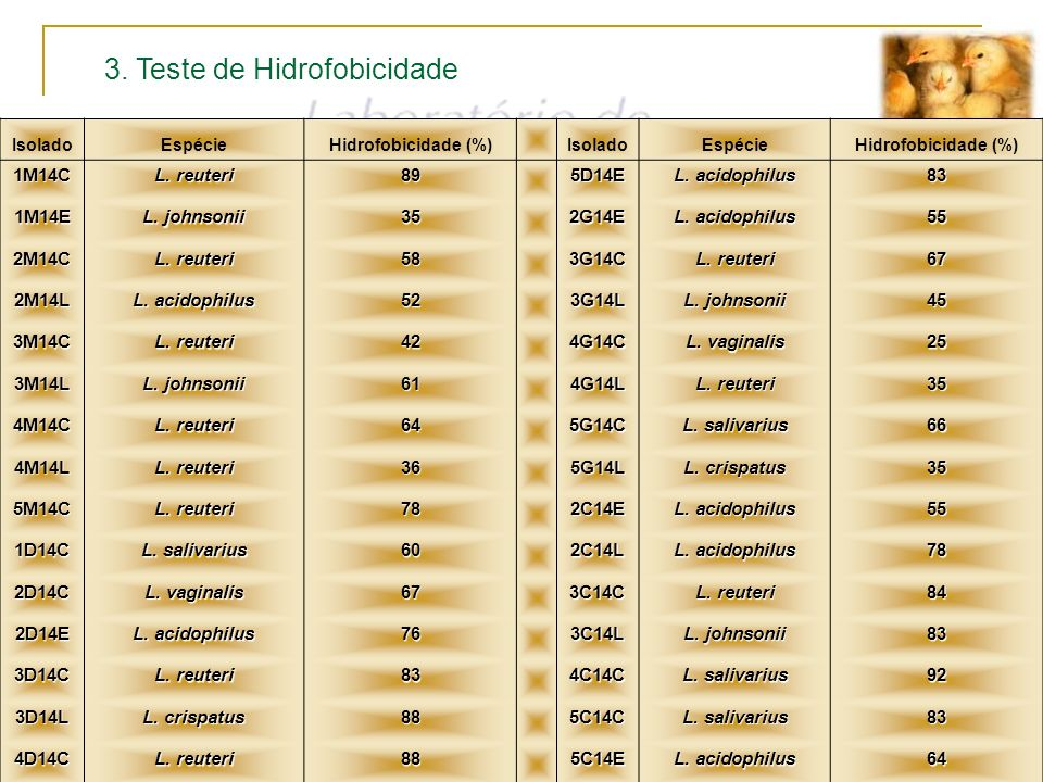 3. Teste de Hidrofobicidade IsoladoEspécieHidrofobicidade (%) IsoladoEspécieHidrofobicidade (%) 1M14C L. reuteri 895D14E L. acidophilus 83 1M14E L. jo