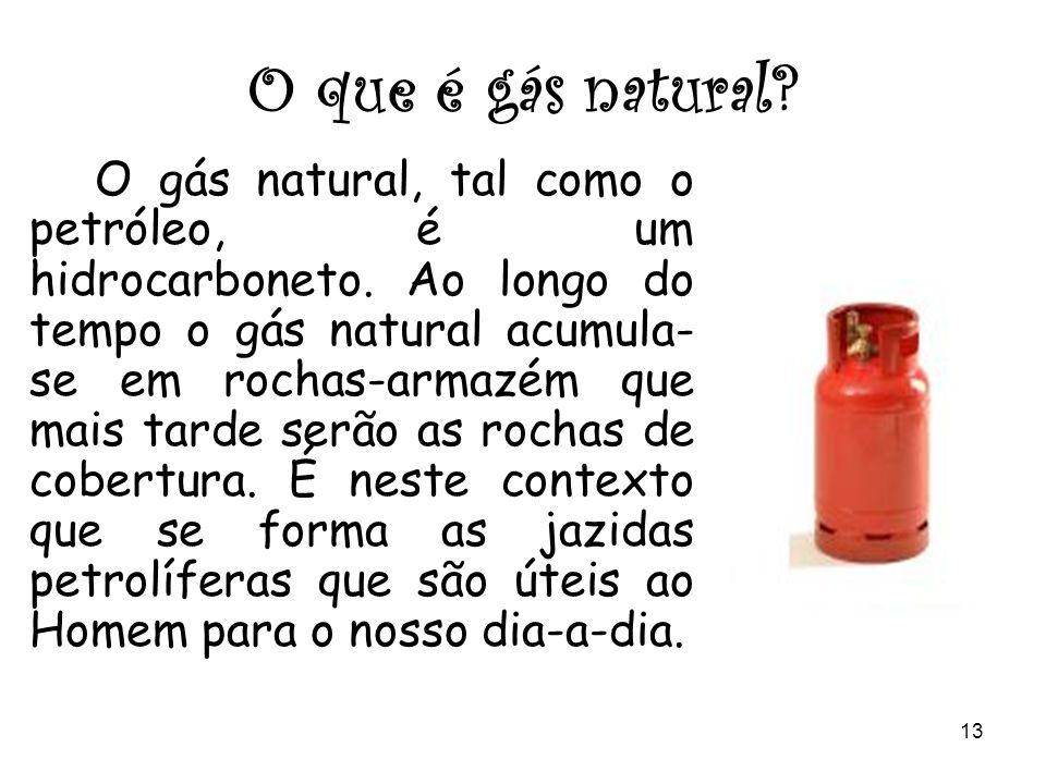 12 O que é o petróleo? O petróleo é um hidrocarboneto e formam-se em ambientes com grande abundância de matéria orgânica e pouco oxigénio, sendo uma e