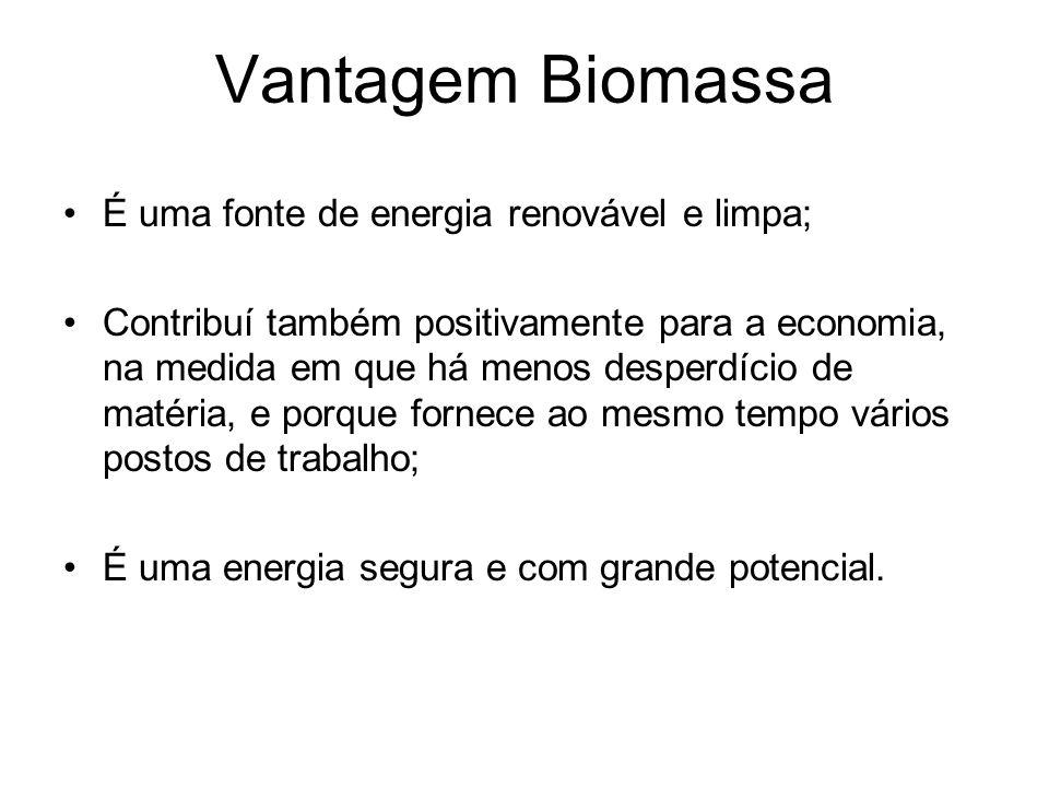 Biomassa É a combustão de matérias biodegradáveis; Gera energia elétrica através de termelétricas; Produz combustível automotivo; Dividido em 3 classe