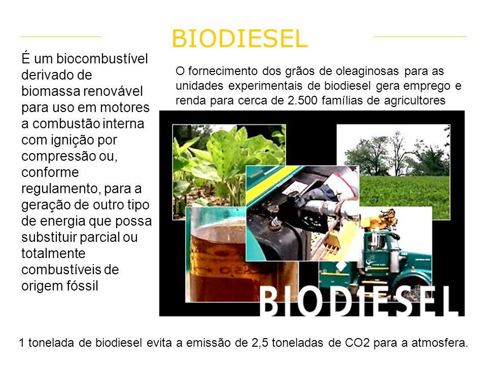 Vantagem Biomassa É uma fonte de energia renovável e limpa; Contribuí também positivamente para a economia, na medida em que há menos desperdício de m