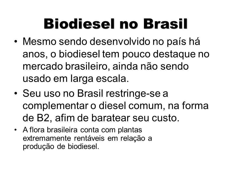 Potencialidades agrícolas no Brasil e Informações de oleaginosa por região