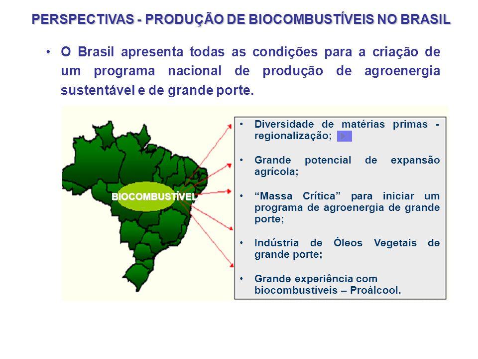 Biodiesel no Brasil Mesmo sendo desenvolvido no país há anos, o biodiesel tem pouco destaque no mercado brasileiro, ainda não sendo usado em larga esc