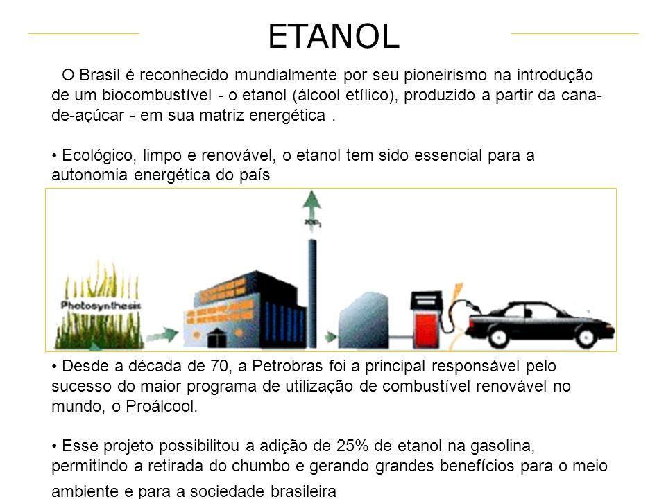 DENDÊ SOJA-MAMONA- ALGODÃO (CAROÇO) SOJA-ALGODÃO-GIRASSOL-CANOLA SOJA-ALGODÃO-GIRASSOL BABAÇU-MAMONA-PALMA CANA-DE-AÇÚCAR DIVERSIDADE DE MATERIAS PRIM