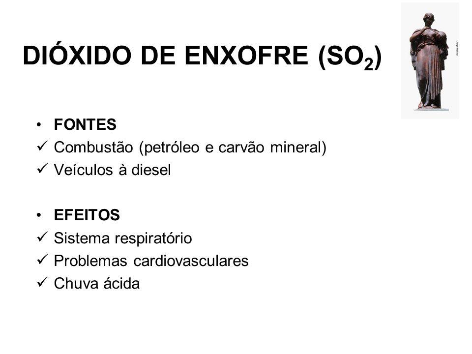 MONÓXIDO DE CARBONO (CO) FONTES Tráfego (veículos) Indústrias Vegetação