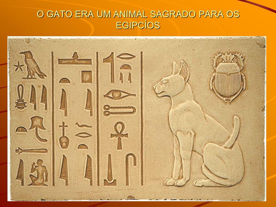 O GATO ERA UM ANIMAL SAGRADO PARA OS EGIPCÍOS