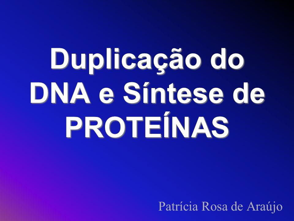 Duplicação do DNA e Síntese de PROTEÍNAS Patrícia Rosa de Araújo