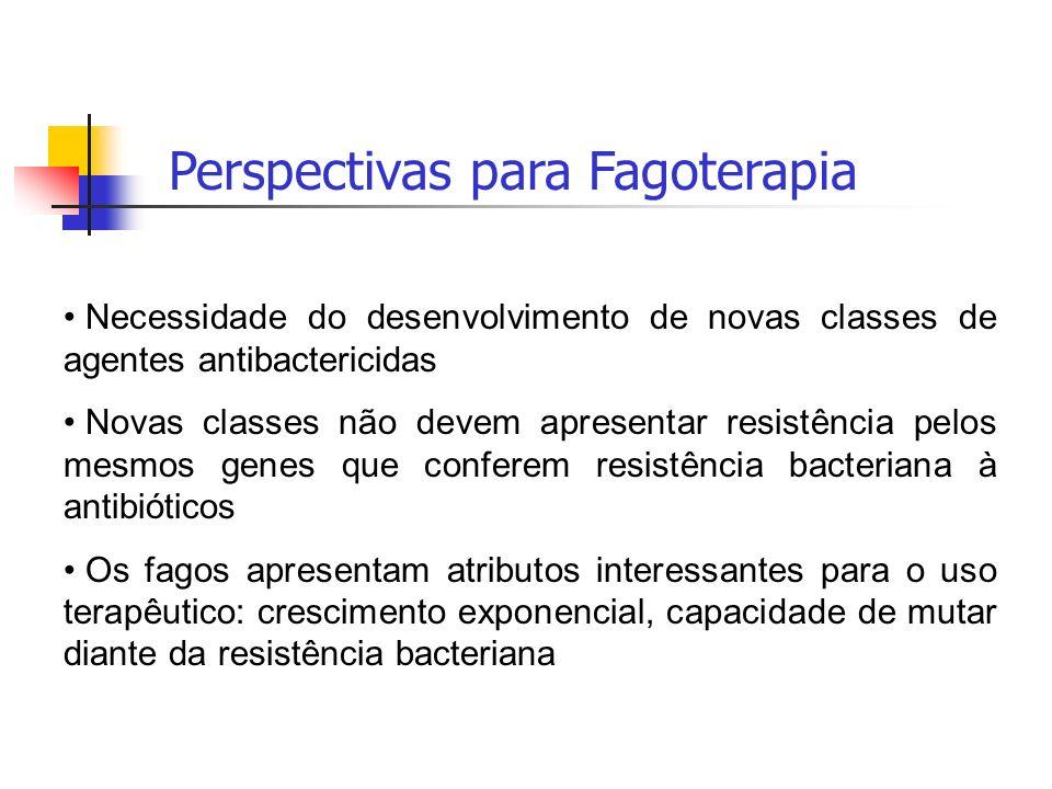 Perspectivas para Fagoterapia Necessidade do desenvolvimento de novas classes de agentes antibactericidas Novas classes não devem apresentar resistênc