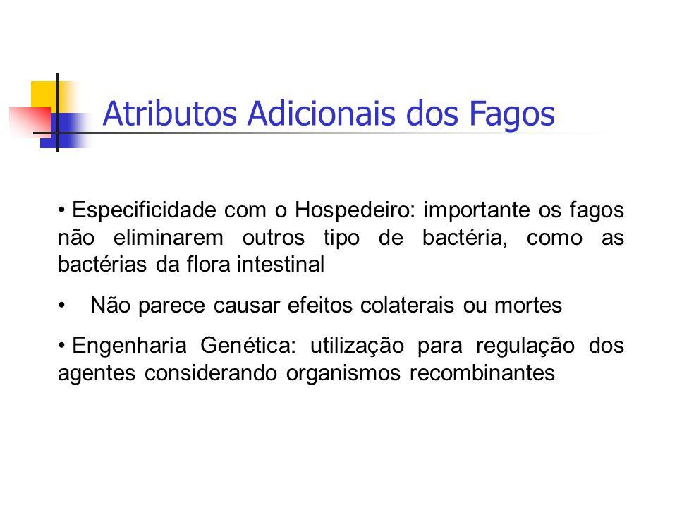 Atributos Adicionais dos Fagos Especificidade com o Hospedeiro: importante os fagos não eliminarem outros tipo de bactéria, como as bactérias da flora