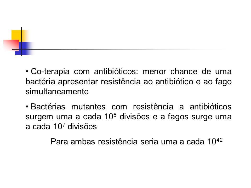 Co-terapia com antibióticos: menor chance de uma bactéria apresentar resistência ao antibiótico e ao fago simultaneamente Bactérias mutantes com resis