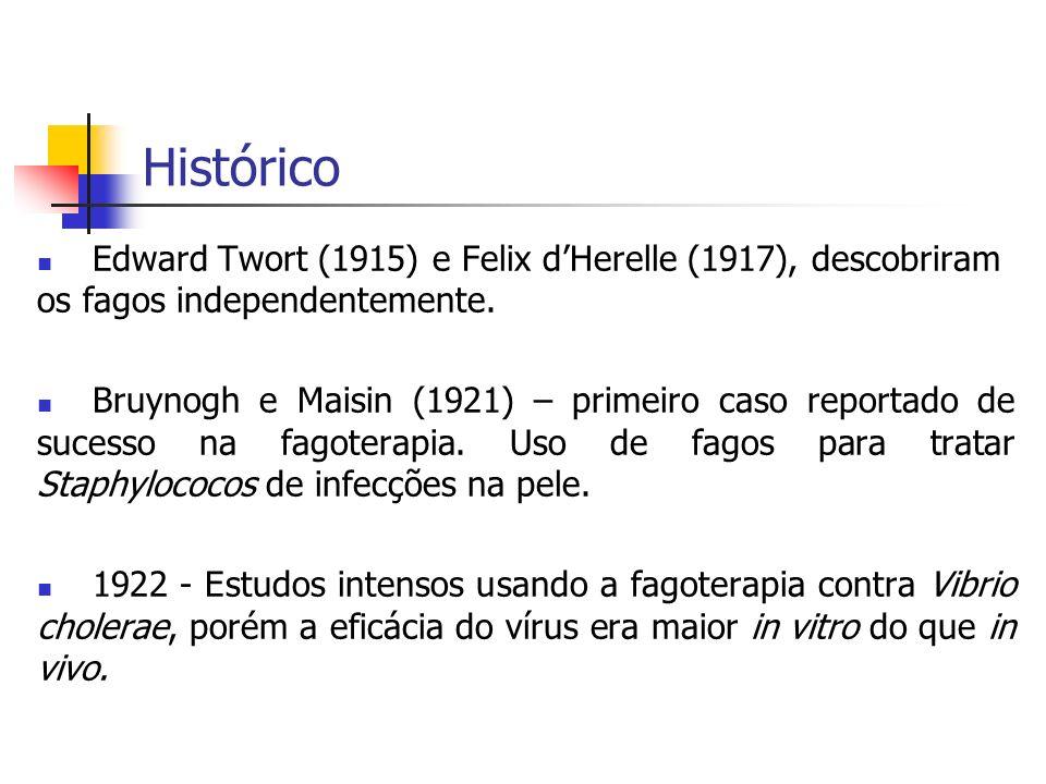 Histórico Edward Twort (1915) e Felix dHerelle (1917), descobriram os fagos independentemente. Bruynogh e Maisin (1921) – primeiro caso reportado de s