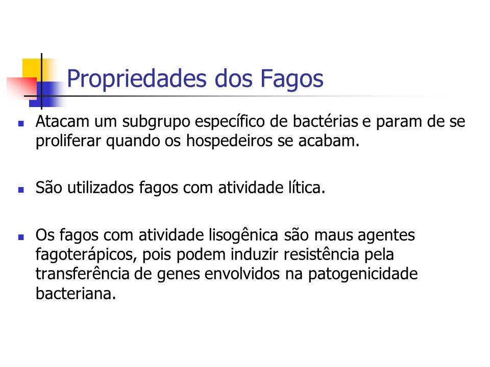 Propriedades dos Fagos Atacam um subgrupo específico de bactérias e param de se proliferar quando os hospedeiros se acabam. São utilizados fagos com a