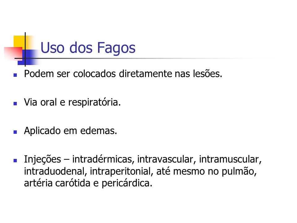 Uso dos Fagos Podem ser colocados diretamente nas lesões. Via oral e respiratória. Aplicado em edemas. Injeções – intradérmicas, intravascular, intram