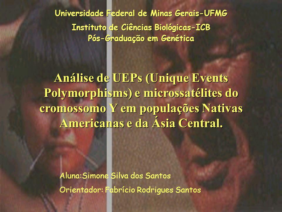 Universidade Federal de Minas Gerais-UFMG Instituto de Ciências Biológicas-ICB Pós-Graduação em Genética Análise de UEPs (Unique Events Polymorphisms)