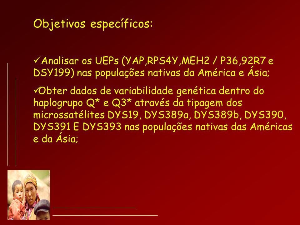 Objetivos específicos: Analisar os UEPs (YAP,RPS4Y,MEH2 / P36,92R7 e DSY199) nas populações nativas da América e Ásia; Obter dados de variabilidade ge