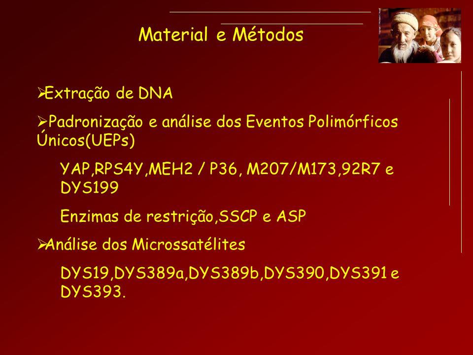 Material e Métodos Extração de DNA Padronização e análise dos Eventos Polimórficos Únicos(UEPs) YAP,RPS4Y,MEH2 / P36, M207/M173,92R7 e DYS199 Enzimas