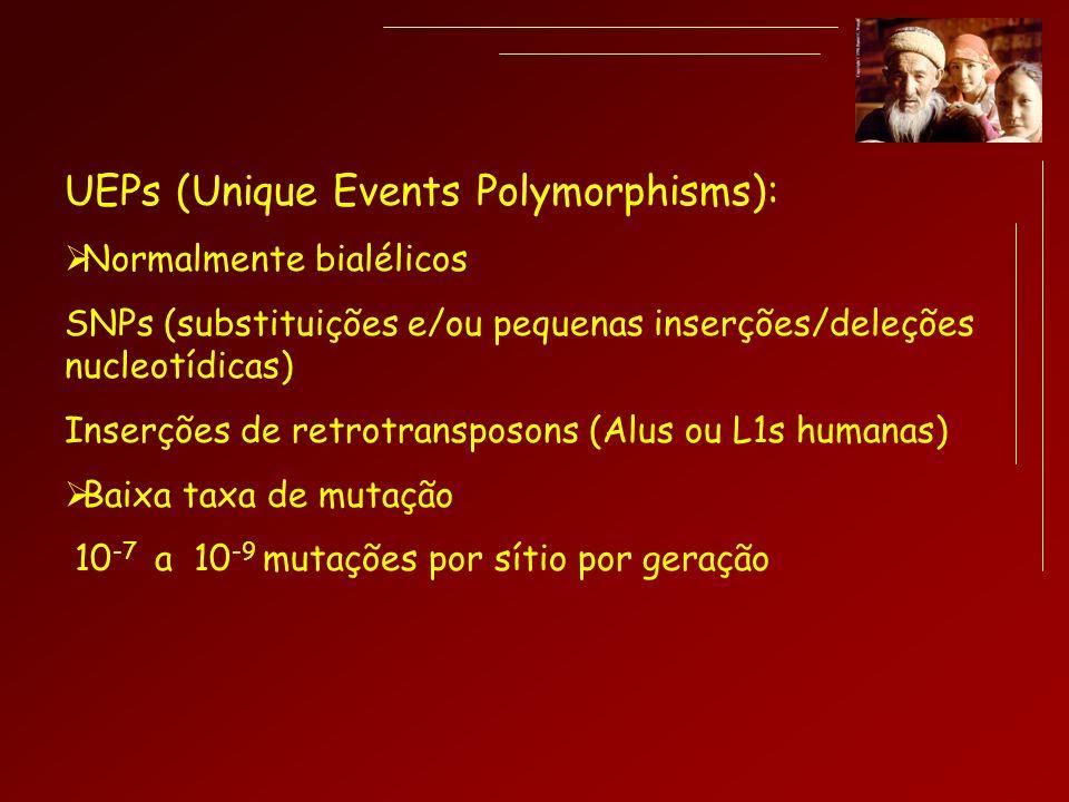 UEPs (Unique Events Polymorphisms): Normalmente bialélicos SNPs (substituições e/ou pequenas inserções/deleções nucleotídicas) Inserções de retrotrans