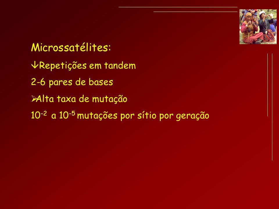 Microssatélites: Repetições em tandem 2-6 pares de bases Alta taxa de mutação 10 -2 a 10 -5 mutações por sítio por geração