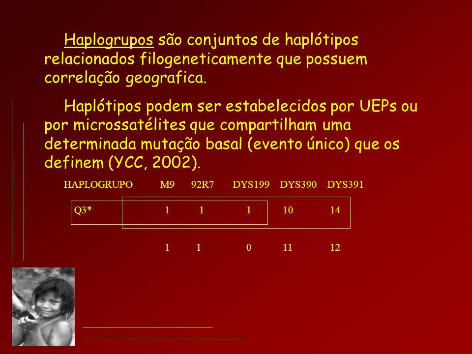 Haplogrupos são conjuntos de haplótipos relacionados filogeneticamente que possuem correlação geografica. Haplótipos podem ser estabelecidos por UEPs