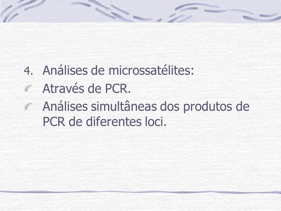 4. Análises de microssatélites: Através de PCR. Análises simultâneas dos produtos de PCR de diferentes loci.