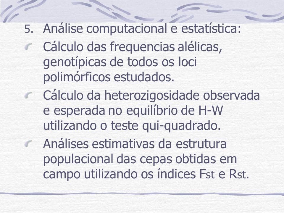 5. Análise computacional e estatística: Cálculo das frequencias alélicas, genotípicas de todos os loci polimórficos estudados. Cálculo da heterozigosi