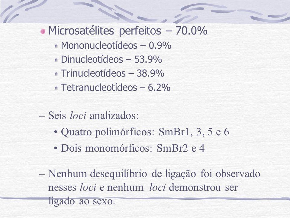 Microsatélites perfeitos – 70.0% Mononucleotídeos – 0.9% Dinucleotídeos – 53.9% Trinucleotídeos – 38.9% Tetranucleotídeos – 6.2% –Seis loci analizados: Quatro polimórficos: SmBr1, 3, 5 e 6 Dois monomórficos: SmBr2 e 4 –Nenhum desequilíbrio de ligação foi observado nesses loci e nenhum loci demonstrou ser ligado ao sexo.