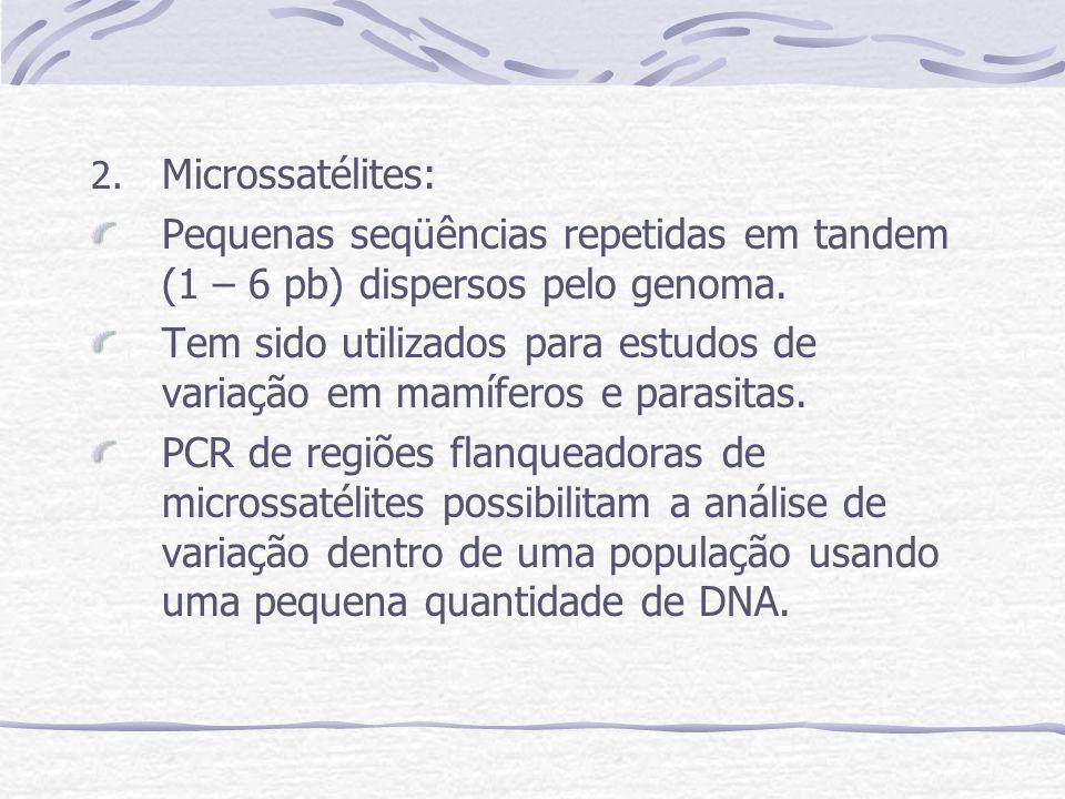 2. Microssatélites: Pequenas seqüências repetidas em tandem (1 – 6 pb) dispersos pelo genoma. Tem sido utilizados para estudos de variação em mamífero