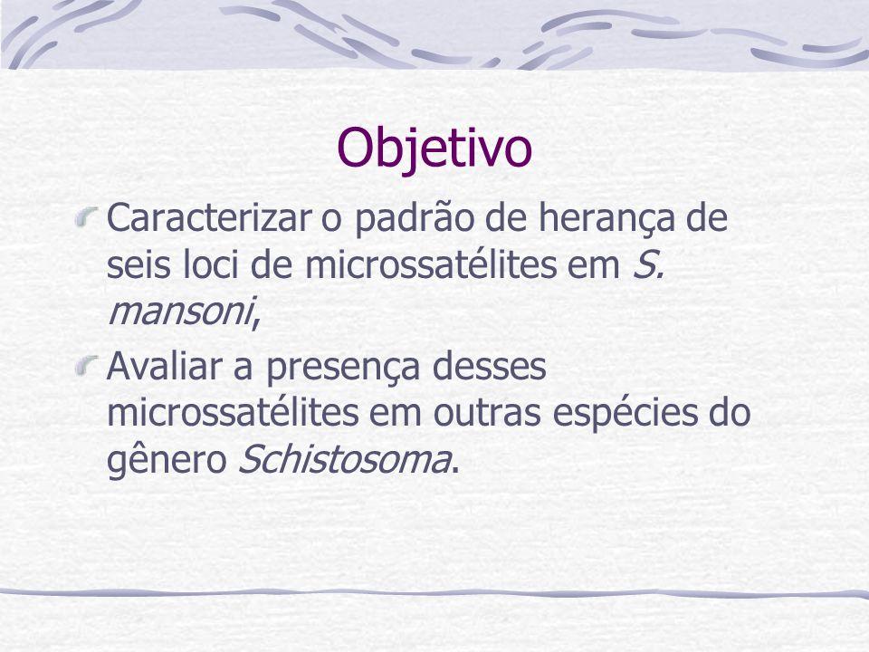 Objetivo Caracterizar o padrão de herança de seis loci de microssatélites em S.