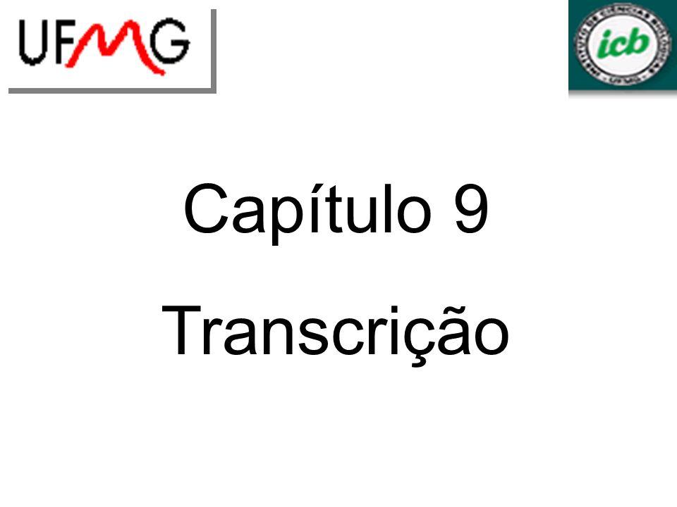 LGCMURLGA Capítulo 9 Transcrição