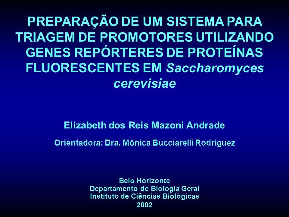 Elizabeth dos Reis Mazoni Andrade Orientadora: Dra. Mônica Bucciarelli Rodriguez Belo Horizonte Departamento de Biologia Geral Instituto de Ciências B