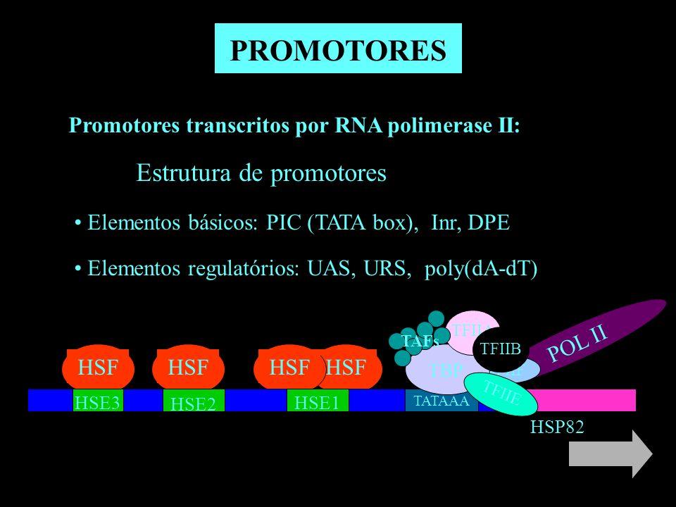 Promotores transcritos por RNA polimerase II: Estrutura de promotores Elementos básicos: PIC (TATA box), Inr, DPE Elementos regulatórios: UAS, URS, po